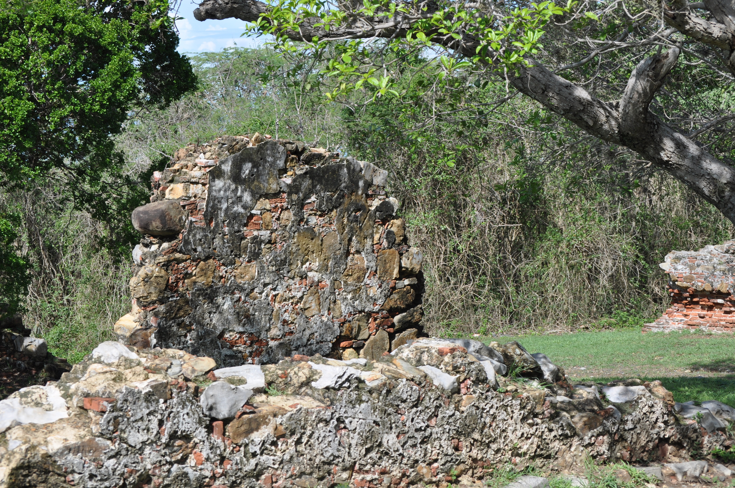 The ruins are located near the Reserve's entrance. Photo: Pamy Rojas