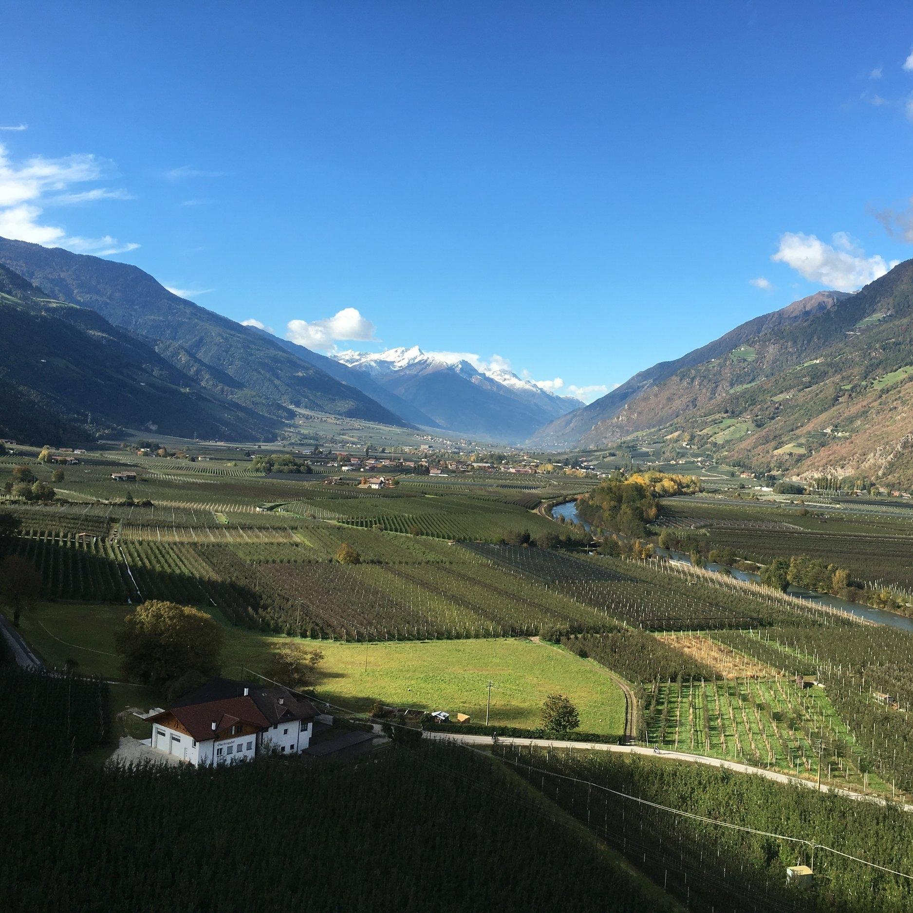 El valle Venosta tiene un microclima especial que provee sobre 300 días de sol al año y permite que sus manzanas maduren lentamente, lo que las hace más jugosas. Es impresionante ver la cantidad de árboles que hay y como las granjas cubren todo el valle; nosotros lo apodamos el valle de la manzanas. Foto: Bruny Nieves