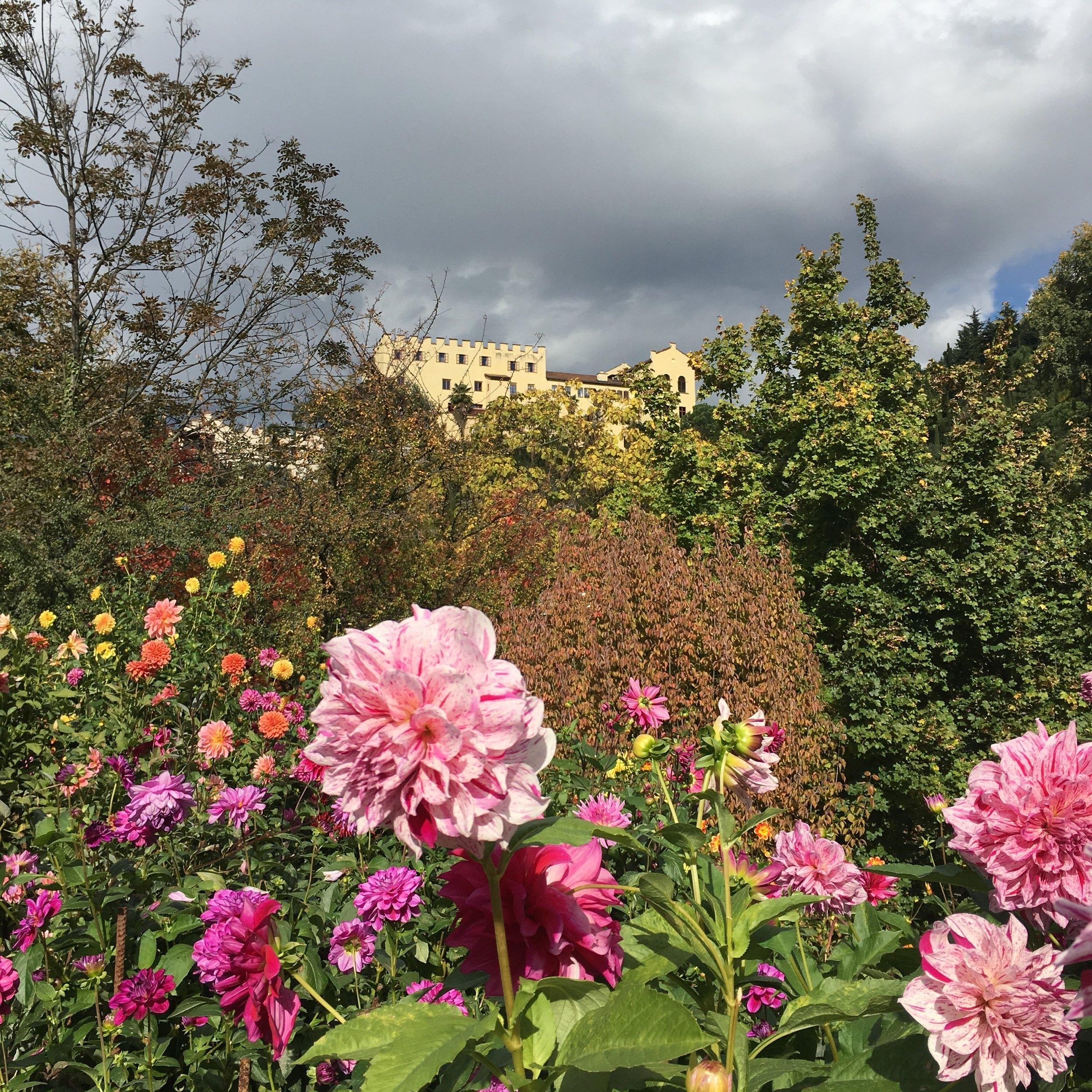 El castillo Trauttmansdorff, alberga además de un interesante museo sobre el desarrollo del turismo en esta región, un colorido y extenso jardín botánico. Nos encantó pues tiene áreas interactivas para los niños sin dejar de ser un paraíso para los amantes de la flora. Foto: Bruny Nieves