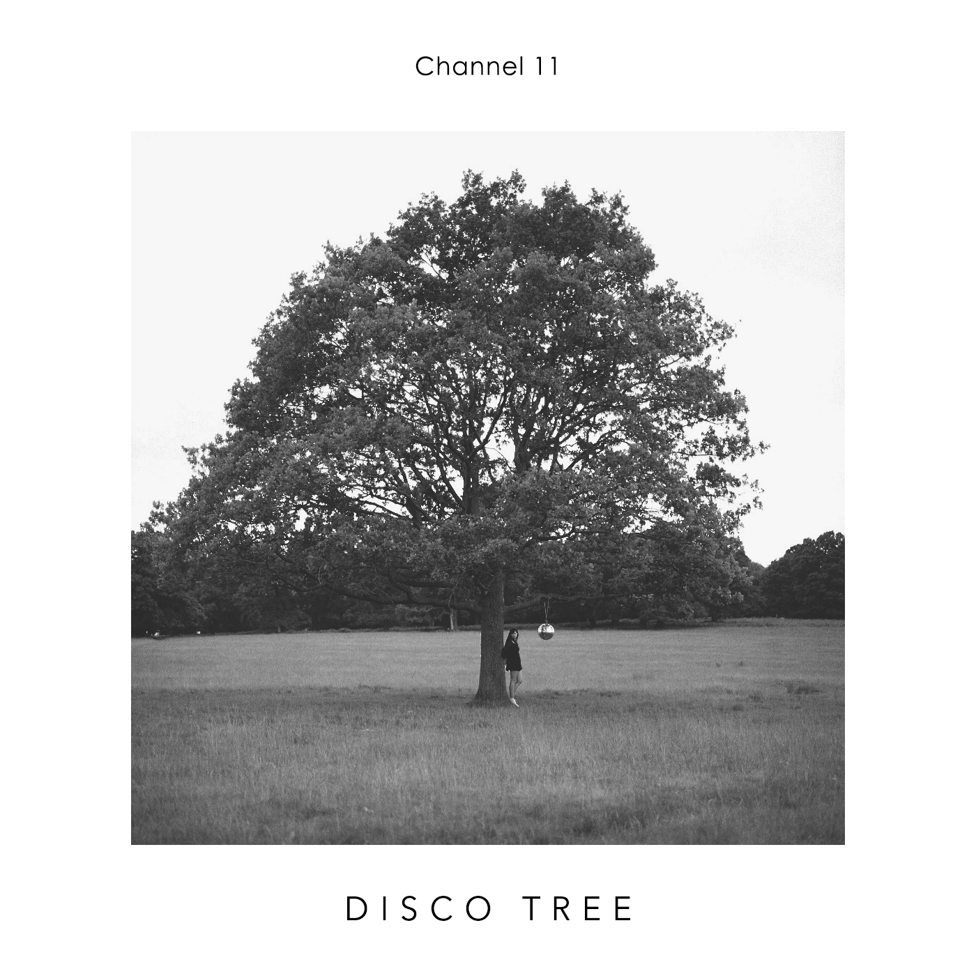 Channel-11-Disco-Tree-album-cover-2017.png