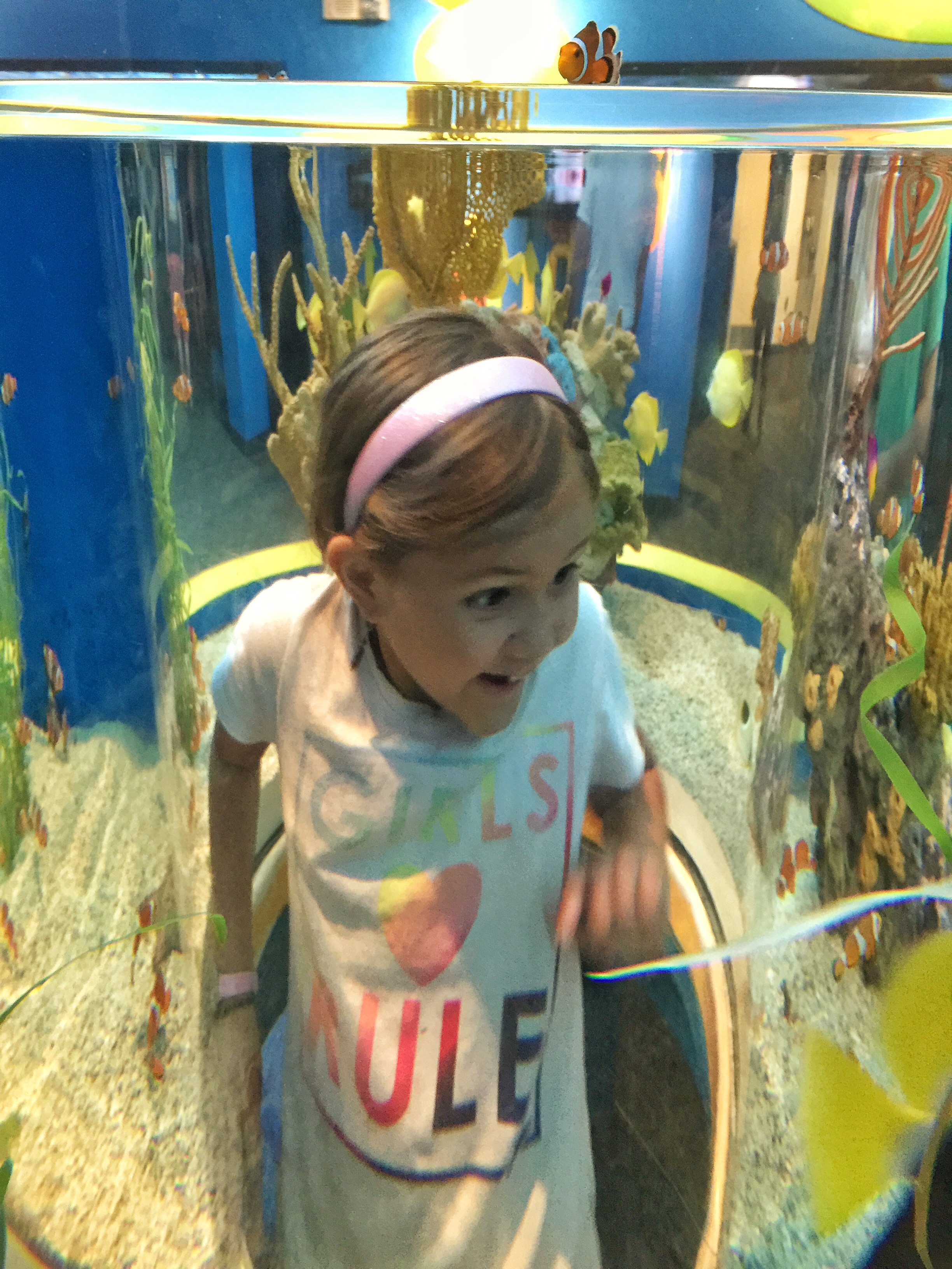 Crawl in the tank and see the fish up close!
