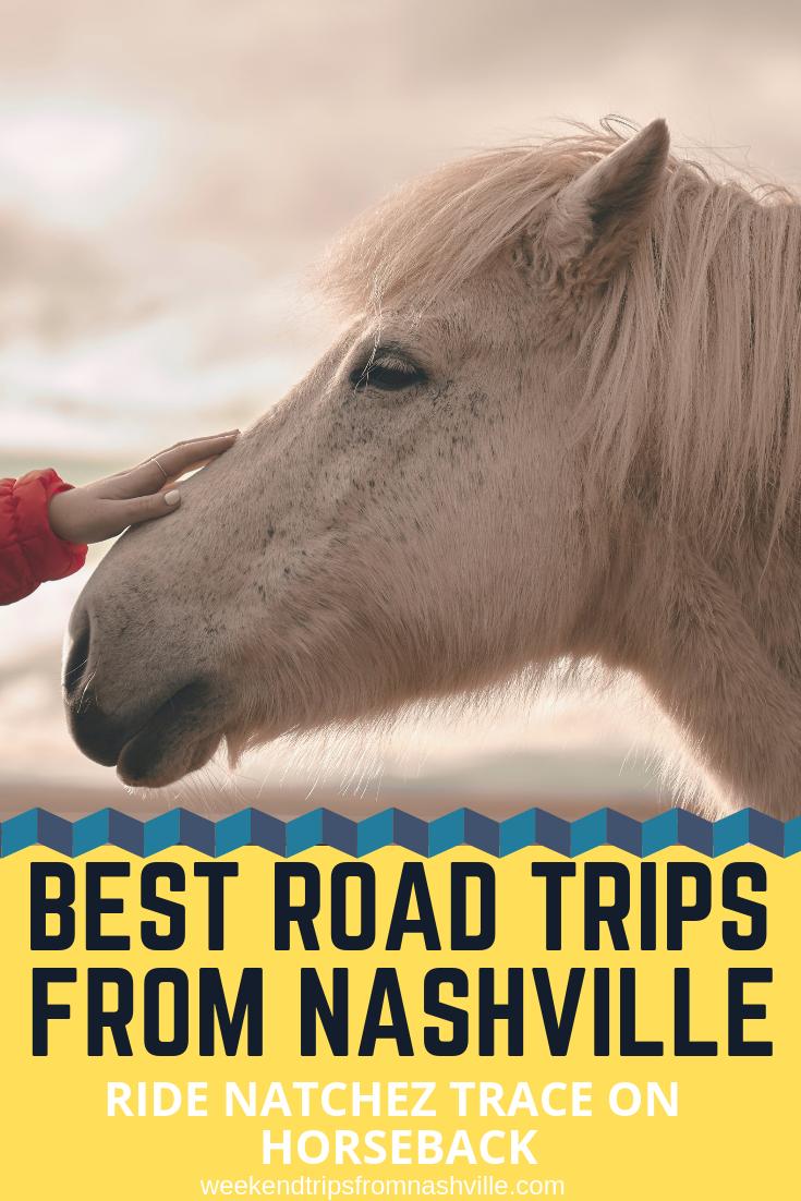 #RoadTripUSA, #BestWeekendRoadTrips: Natchez Trace Stables via WeekendTripsFromNashville.com