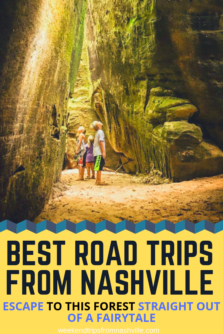 #RoadTripUSA, #BestWeekendRoadTrips: Dismals Canyon, AL, photo via  Dismals Canyon