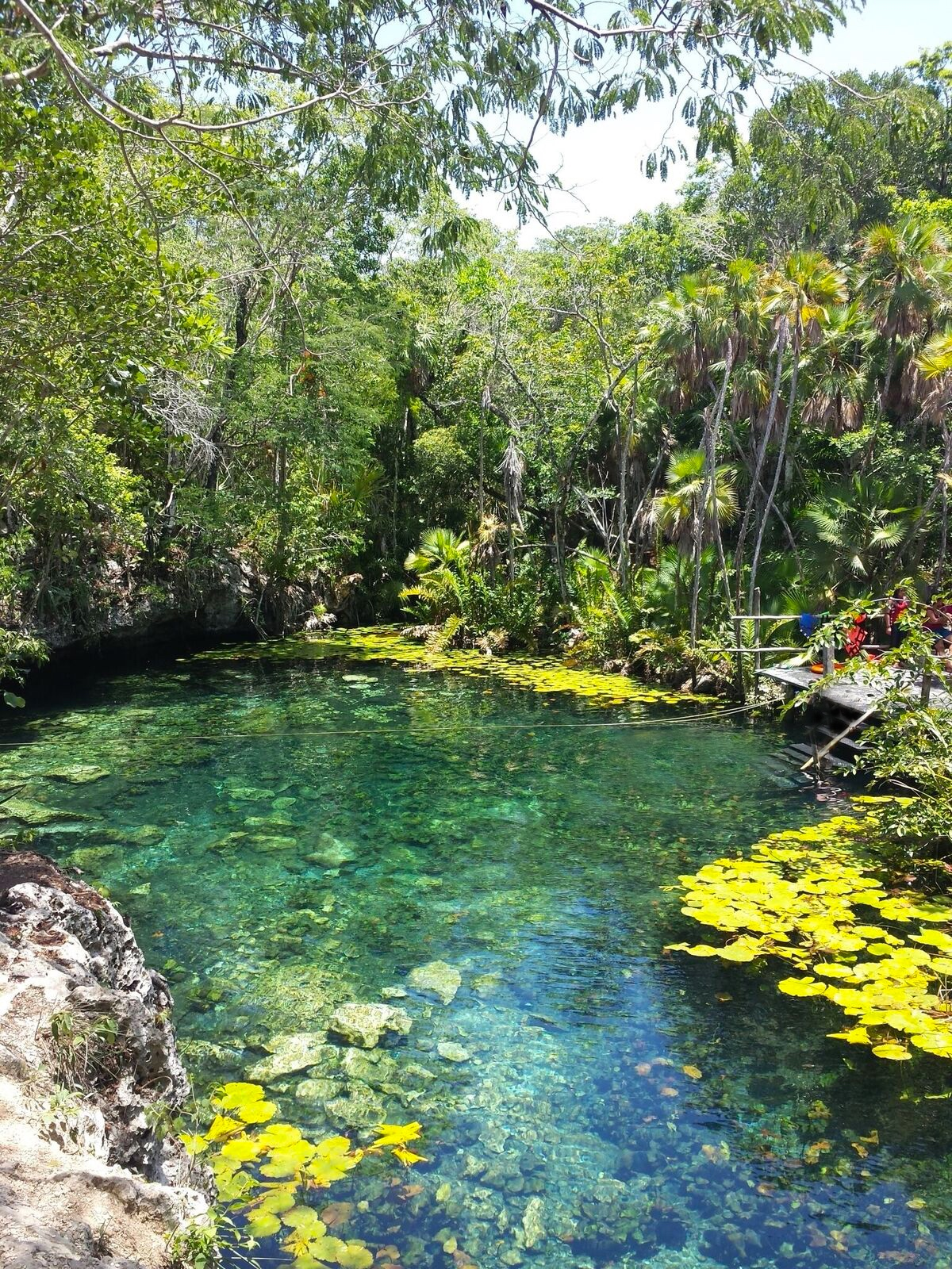 When leaving Dos Ojos ask for directions to Cenote Nicte-Ha, access is included in your Dos Ojos entry price and it is well worth a visit.