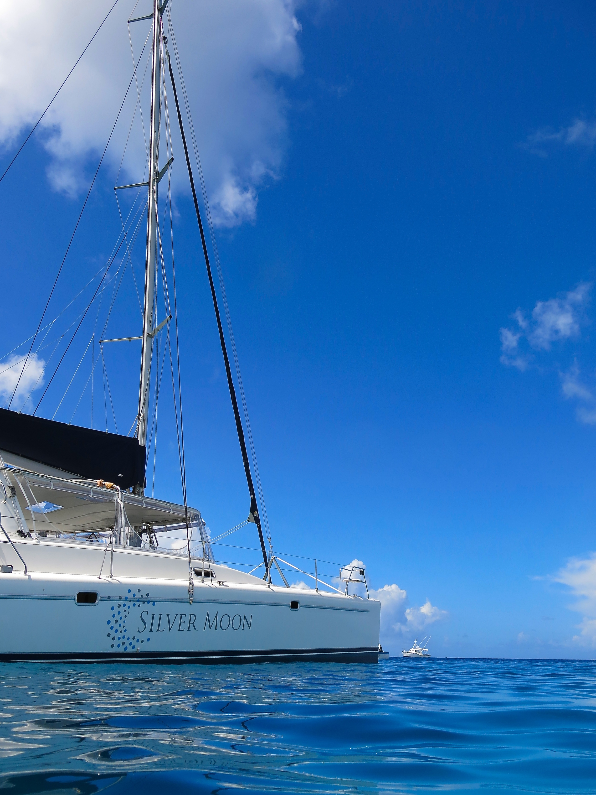 The highlight of our trip was the day we chartered a private catamaran from  Silver Moon . Their staff was amazing, fun, and had a great sense of humor. They served us a fantastic lunch and the drinks were flowing throughout the day.
