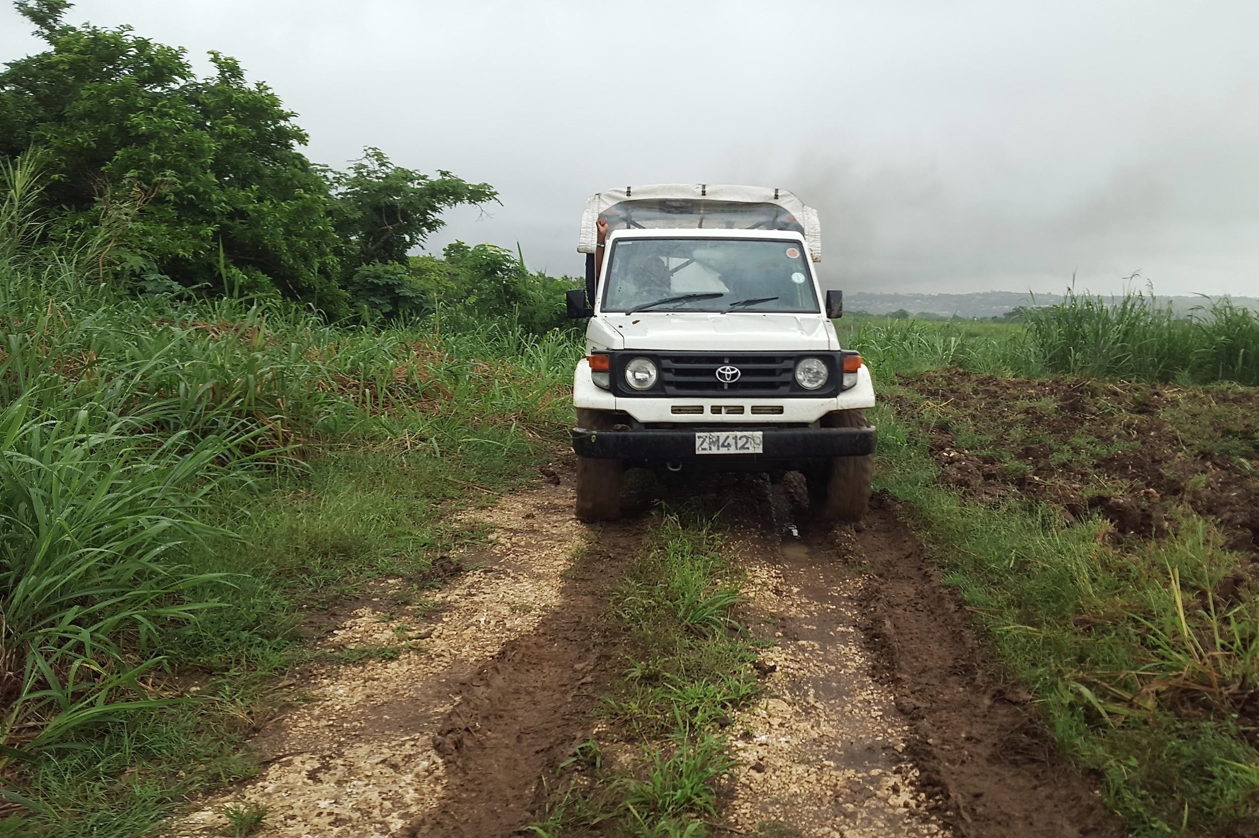 Another great excursion is off-roading with  Island Safari . It is a unique way to visit the island and take in the terrain. You will also learn about the history of Barbados and visit several different landmarks.