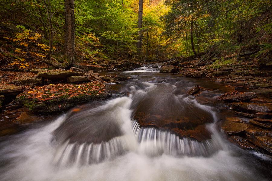 Autumn Cascade, Photo by Sarah Marino