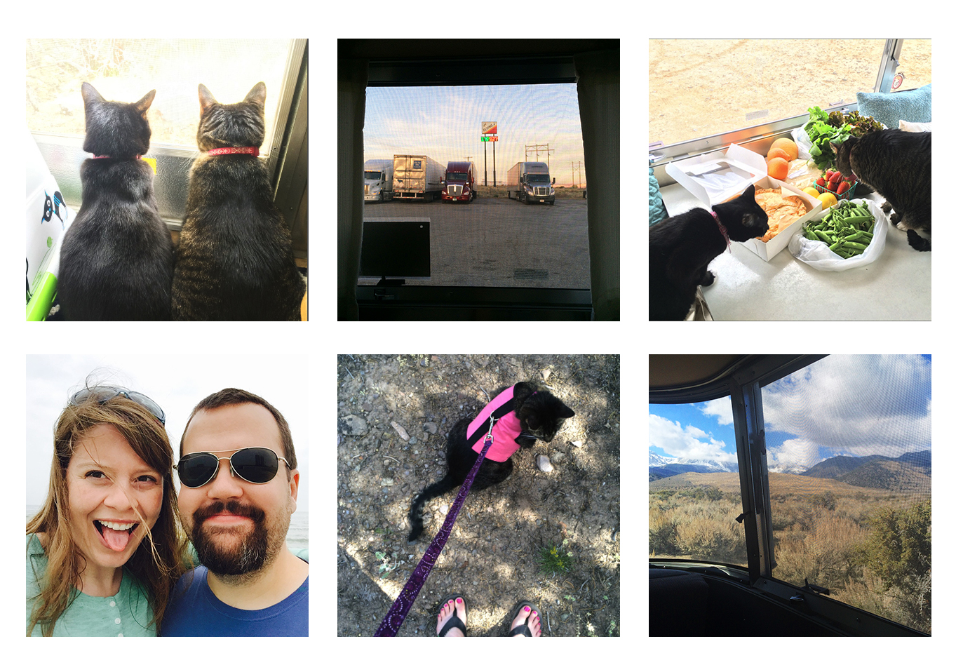 """Some iPhone photos of our time on the road... From upper left: Cats enjoying the view of some birds, our first night spent at a Flying J Truck Stop, cats approving the farmer's market purchases in Anza-Borrego Desert State Park, having a bit of fun, walking a cat (which is more like a lot of resting with a few steps here and there), and a typical """"office view"""" from the Airstream."""