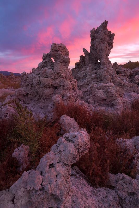Snake Eyes - Mono Lake, Eastern Sierra, California