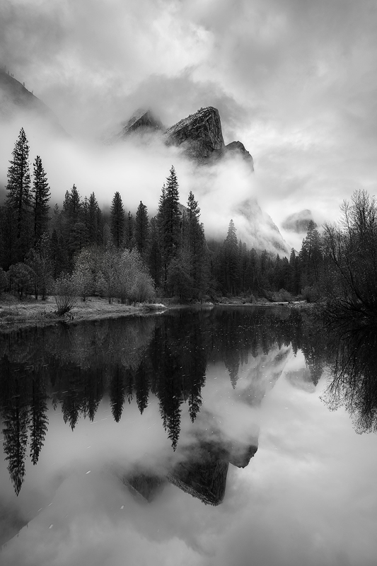 13. The Tree Brothers, Yosemite National Park