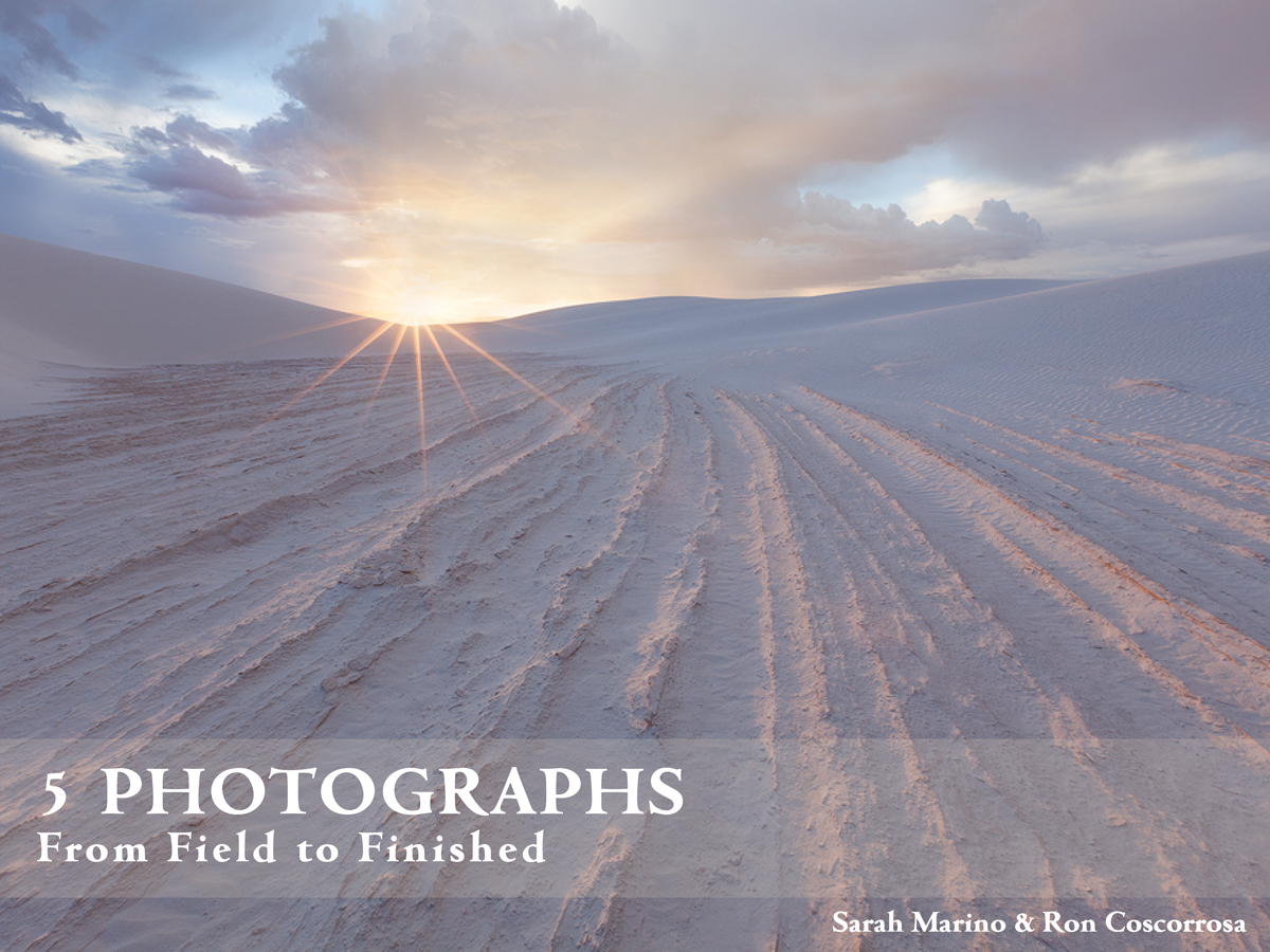 Five-Photographs-Ebook-from-Nature-Photo-Guides-COVER.jpg
