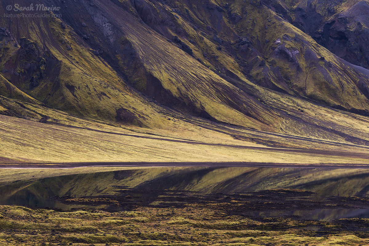Iceland's characteristic green mountains reflect in a large lake in the Landmannalaugar region.
