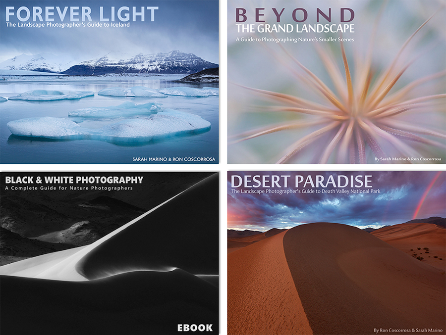 Layered-Covers-All-Four-Books-No-Border-900px.jpg