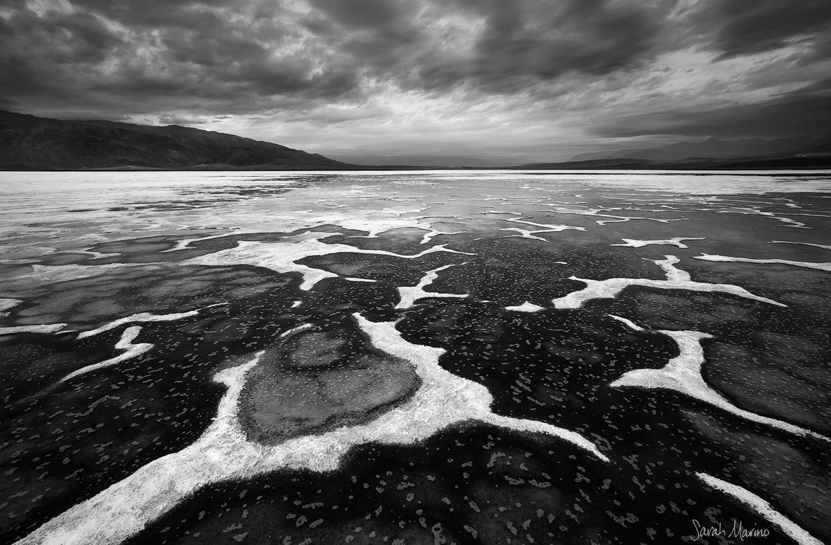 Salt Amoeba, Death Valley National Park
