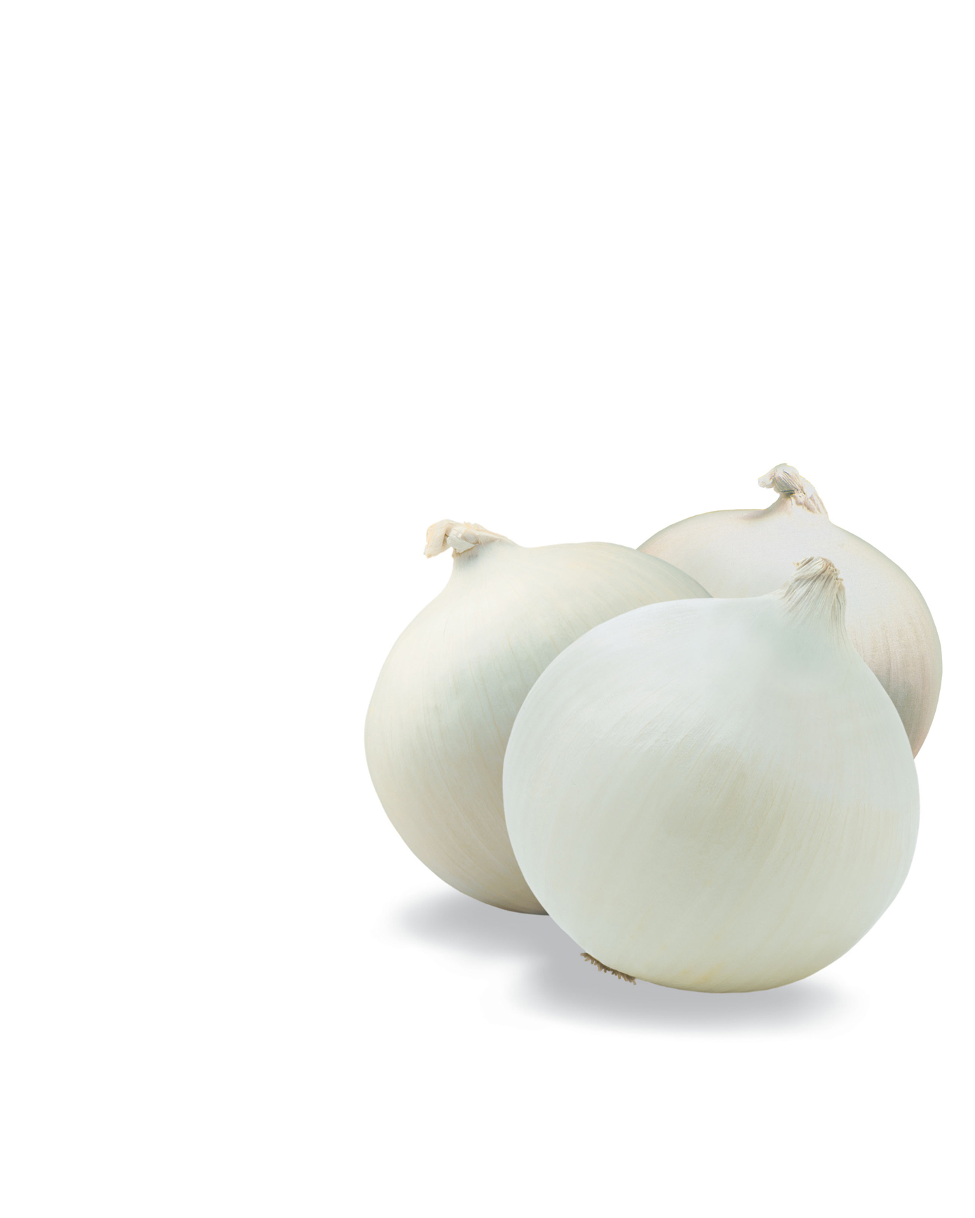 white_onions copy.jpg