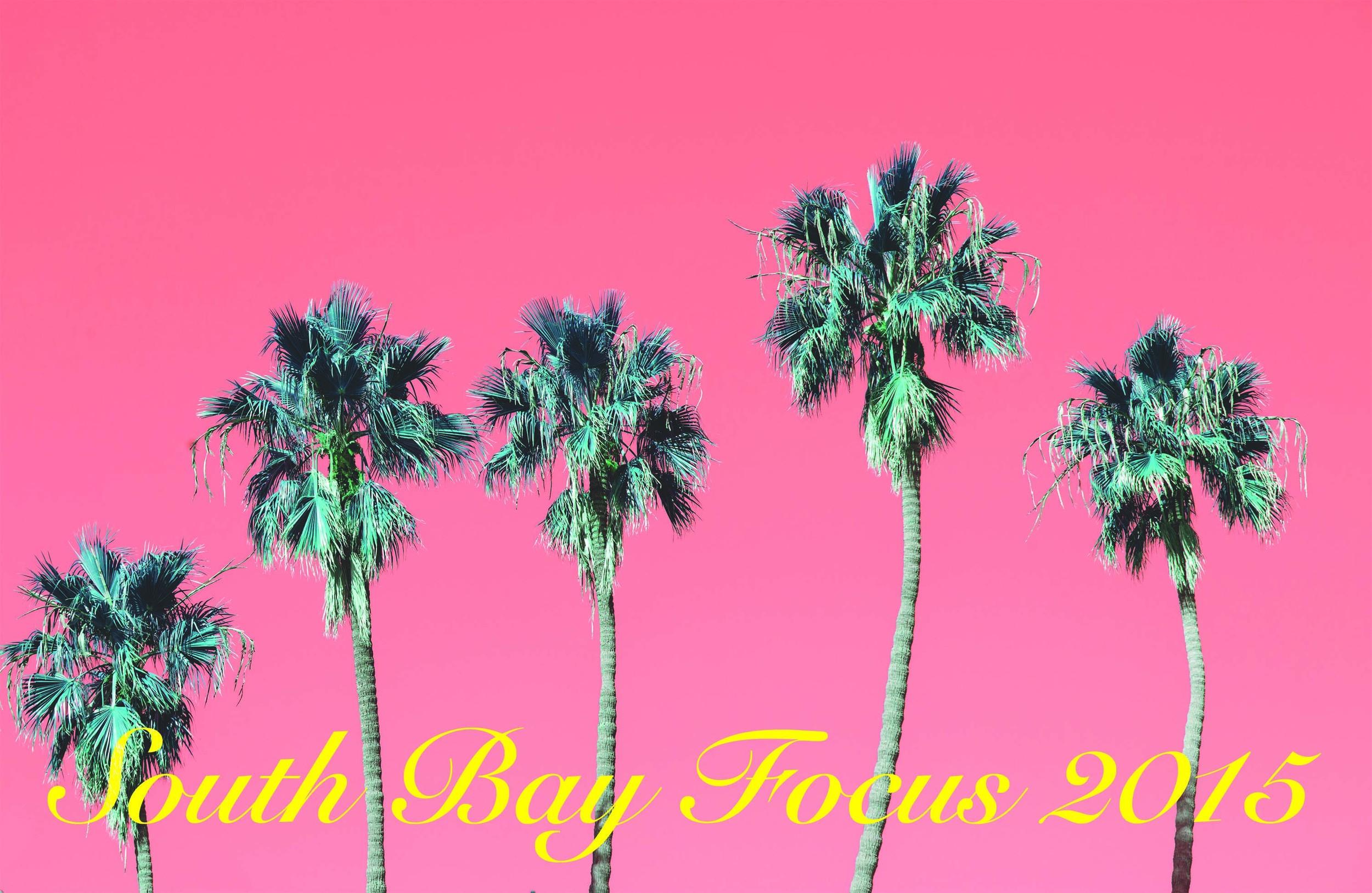 South Bay Focus 2015