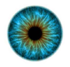 TAM-More Eyes2.jpg