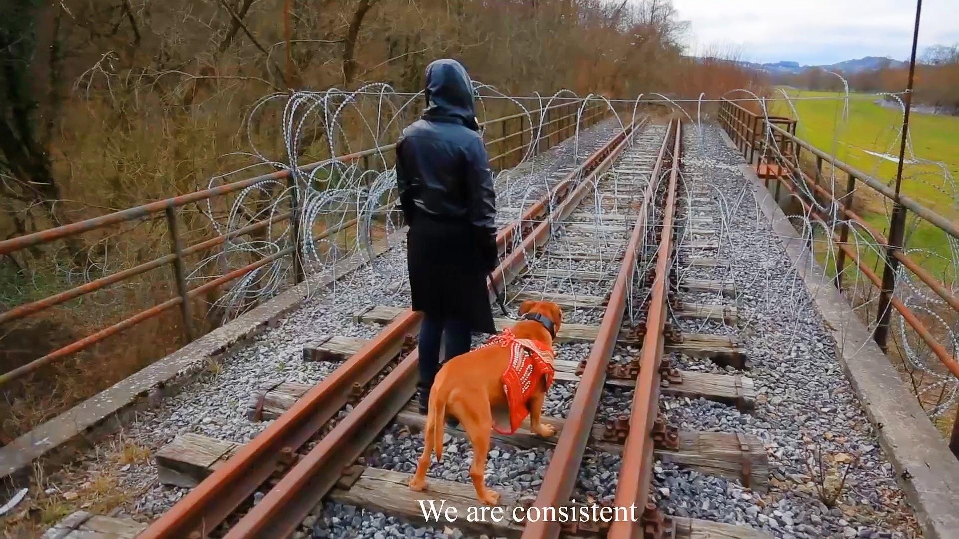 Lucija-Konda-Labas_We-are-the-dogs.jpg