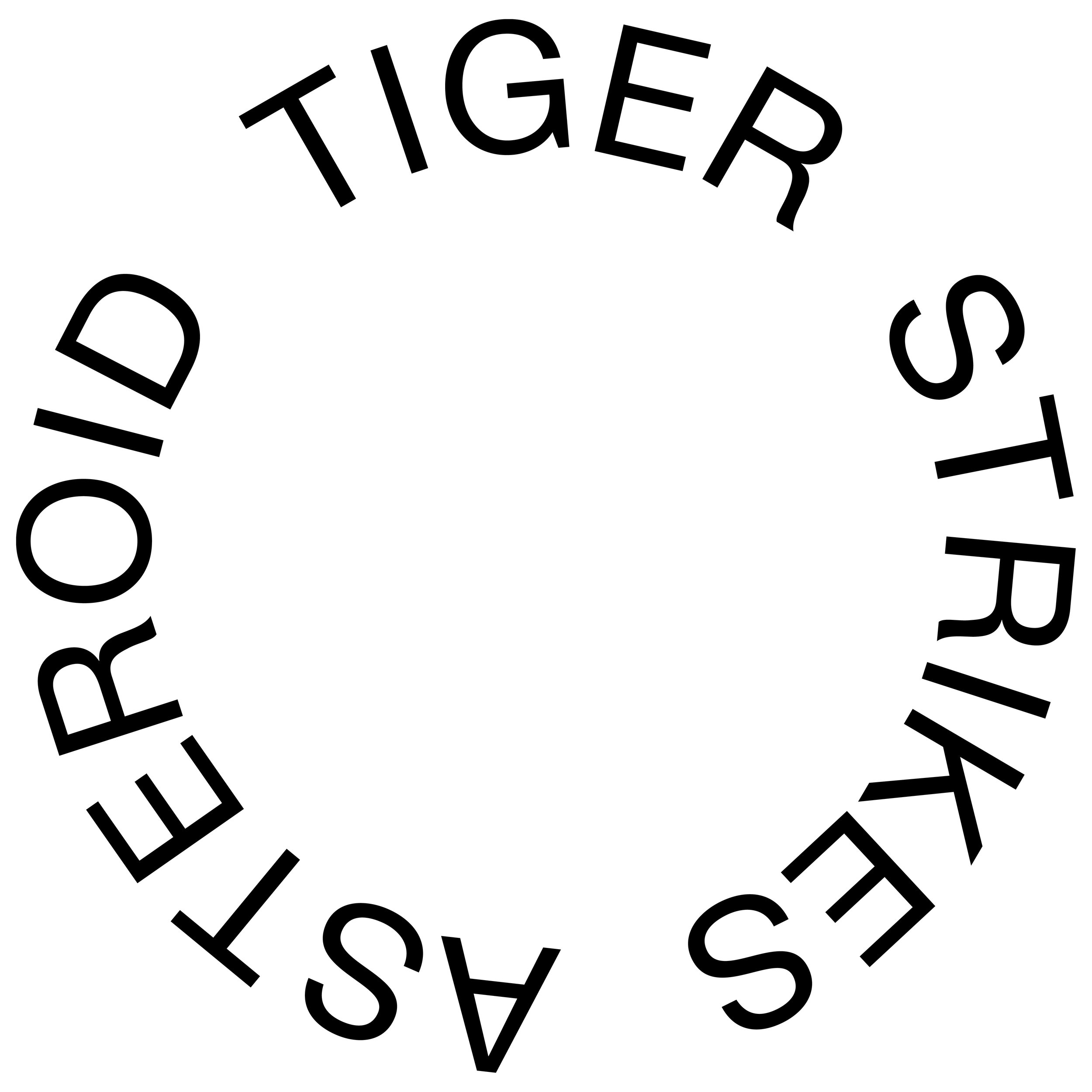 TSA Network Logo big.jpg