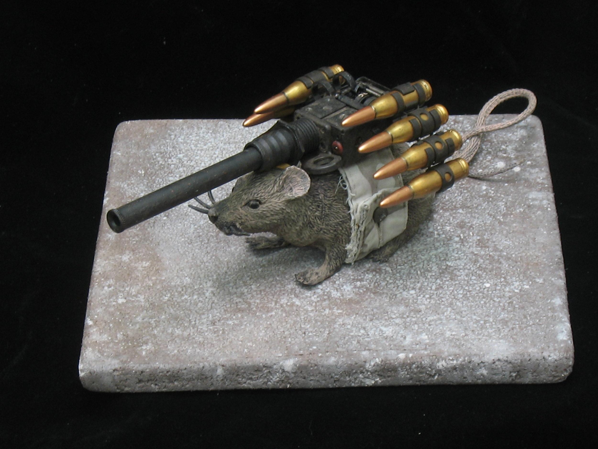 attack rat 2.JPG