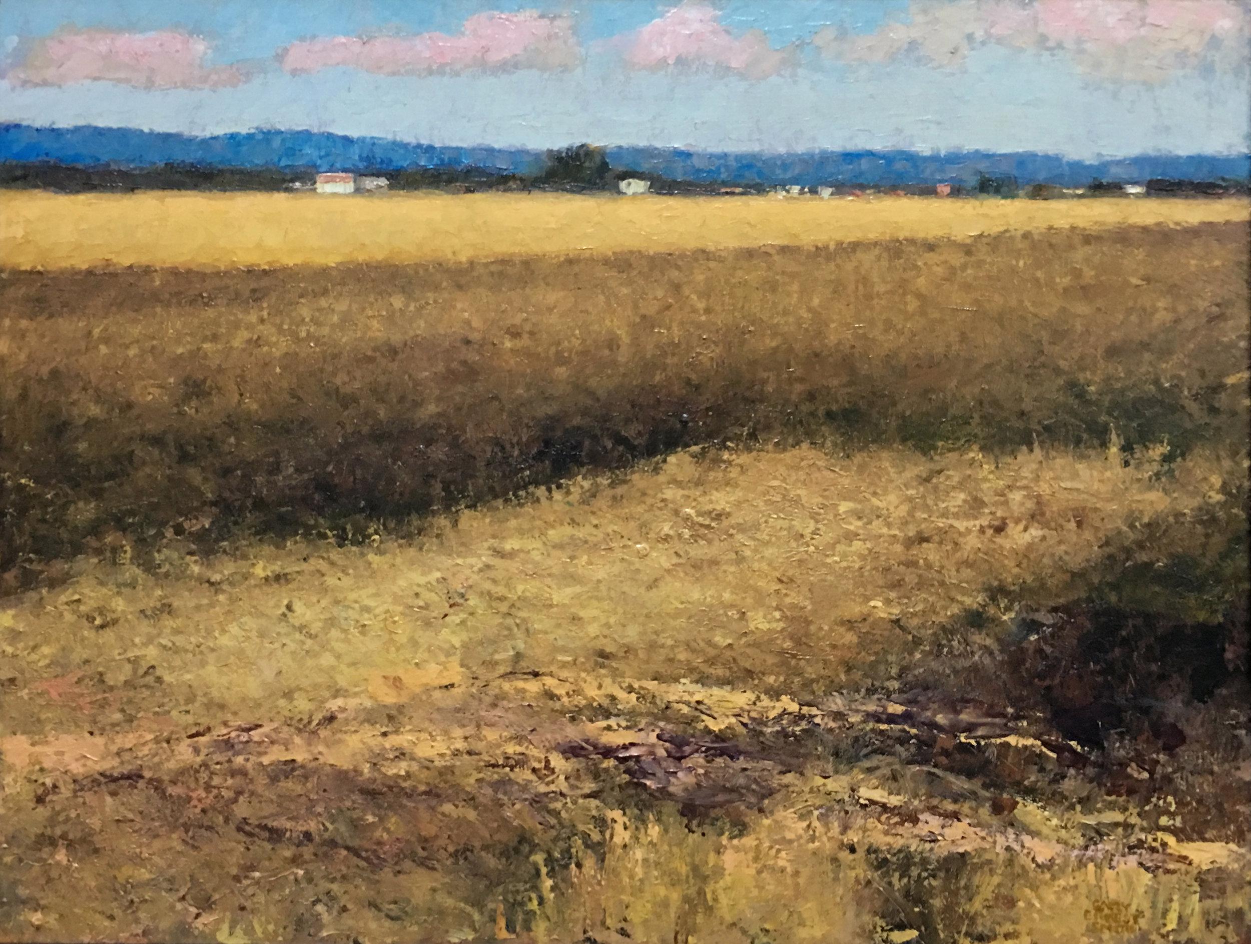 08_Gary+Ernest+Smith_Harvested+Field_oil+on+canvas_18x24-1.jpg