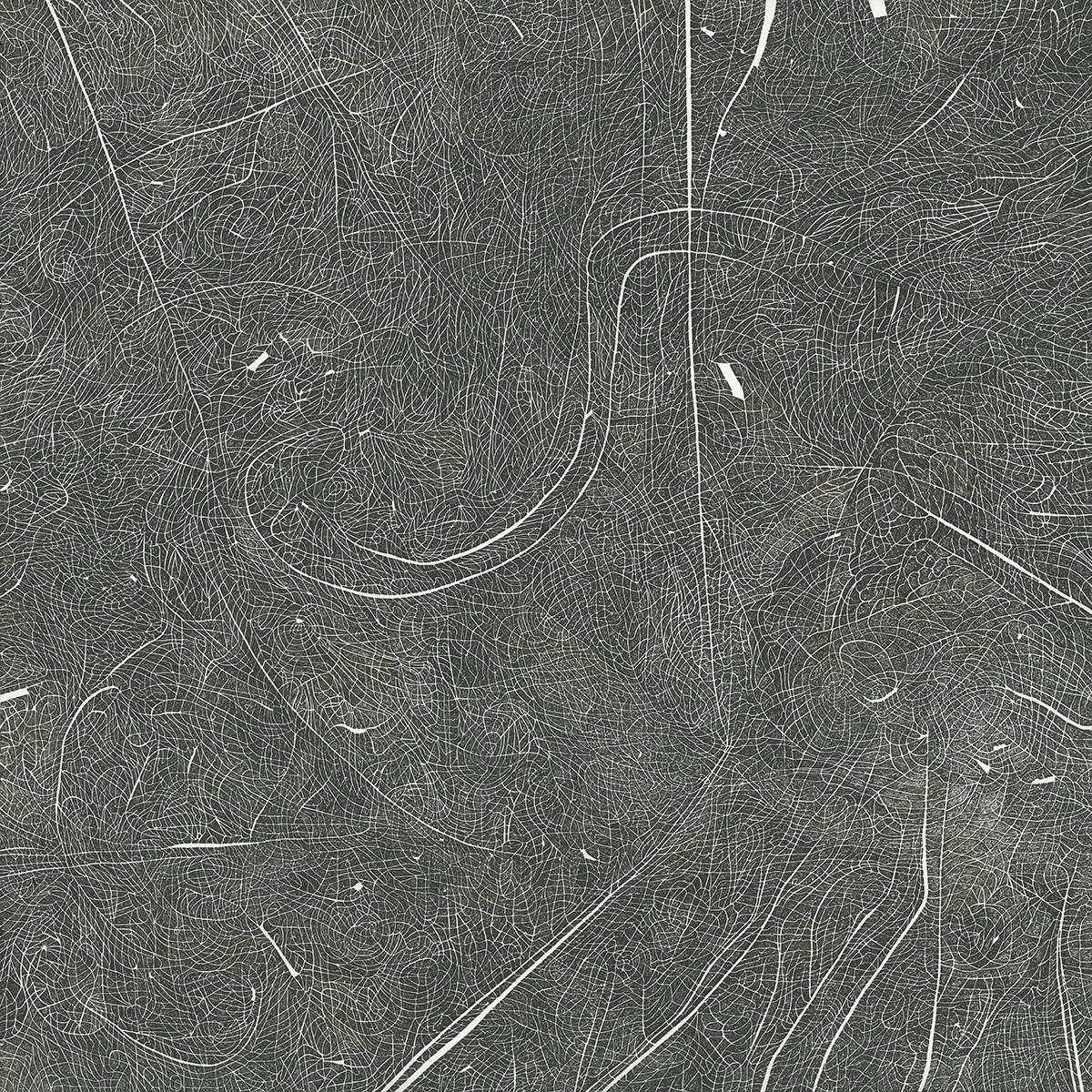 Al Denyer    Terrain   ink on paper, 30 x 30 in.