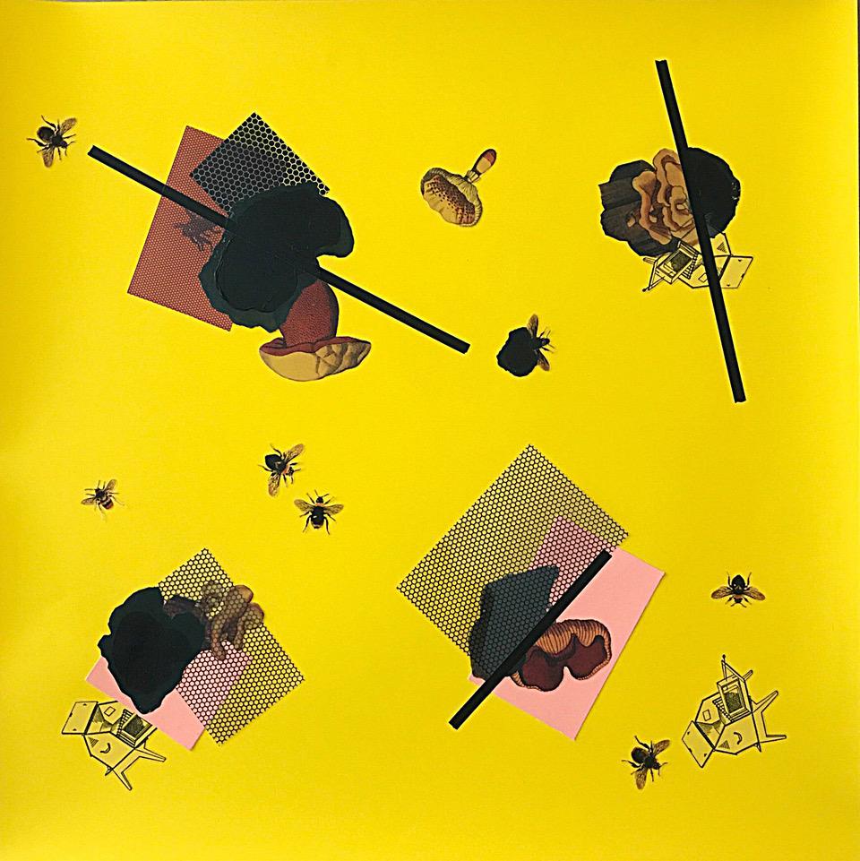 Carol Sogard    Reishi Bees   mixed media, coloraid, 19 x 19 in.
