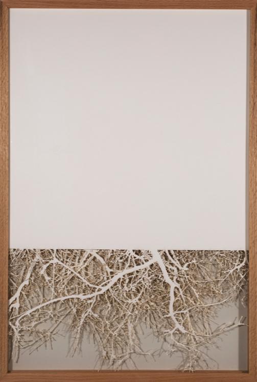 Wendy Wischer    Wooded II   laser-cut paper, 24 x 33 in.