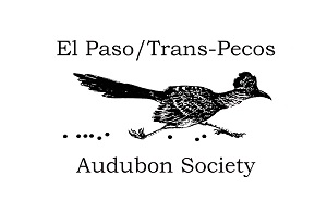 Audubon small logo.jpg