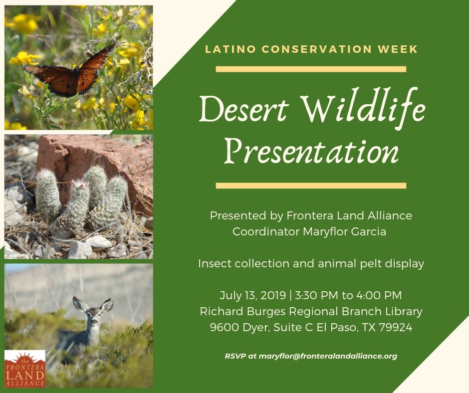 Desert Wildlife.jpg