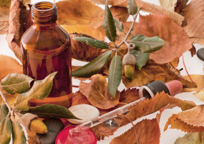 fall oils.jpg