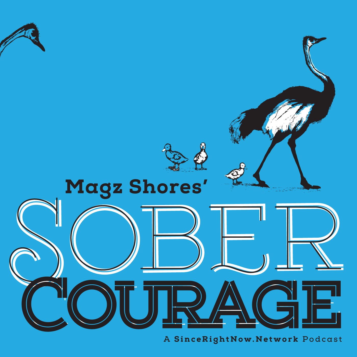 SoberCourage_COVER.png