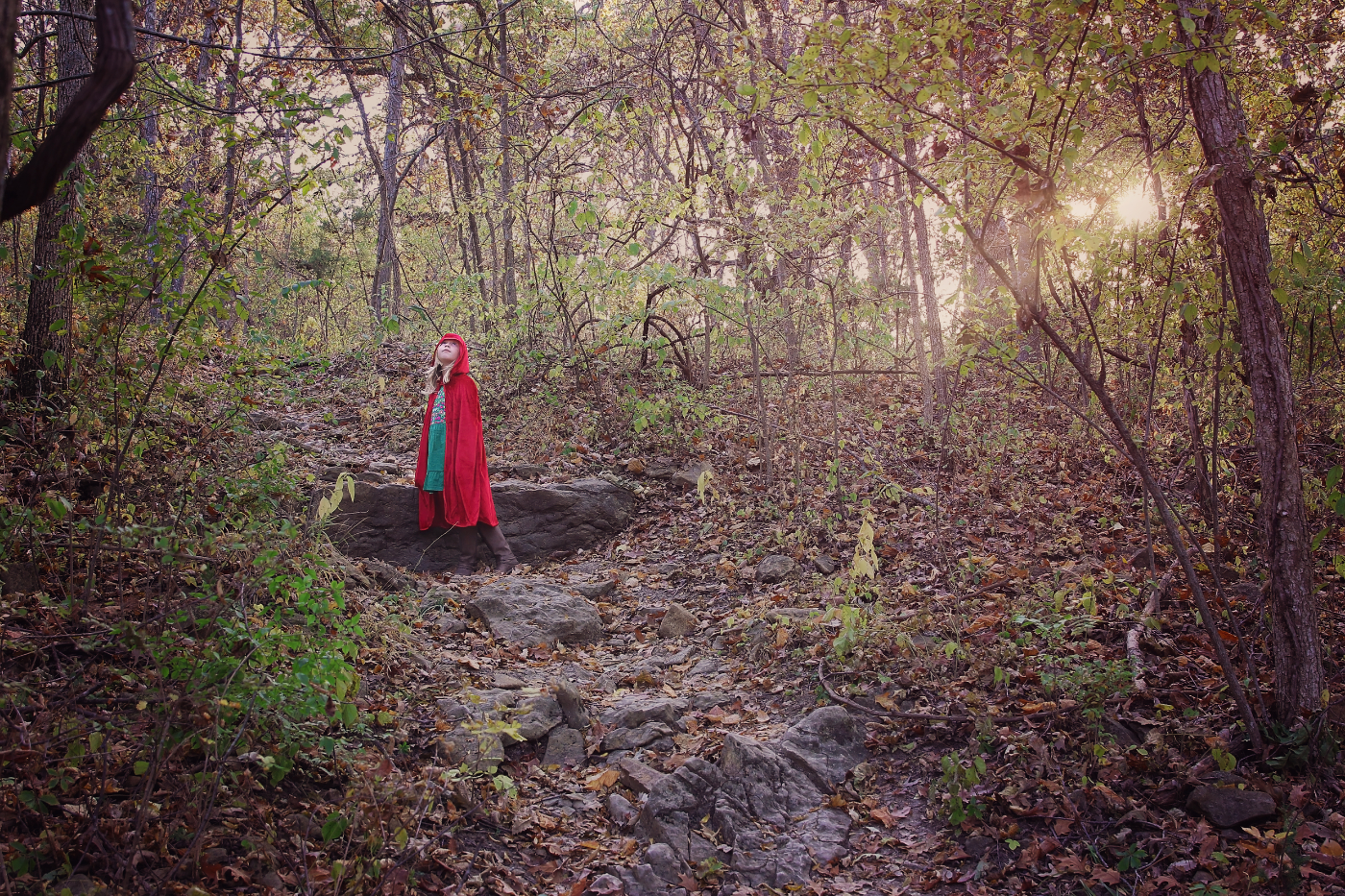 Into the Woods  / October 2015