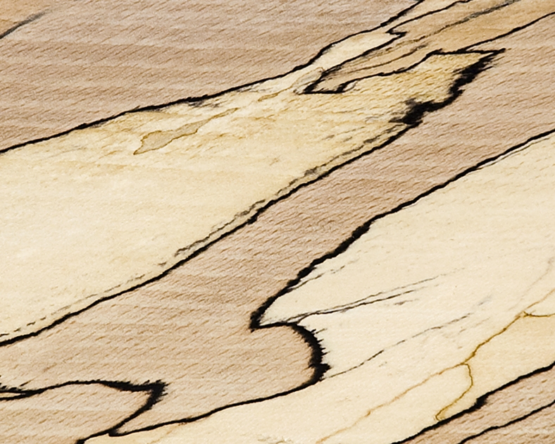 Scottish Hardwood: Spalted Beech