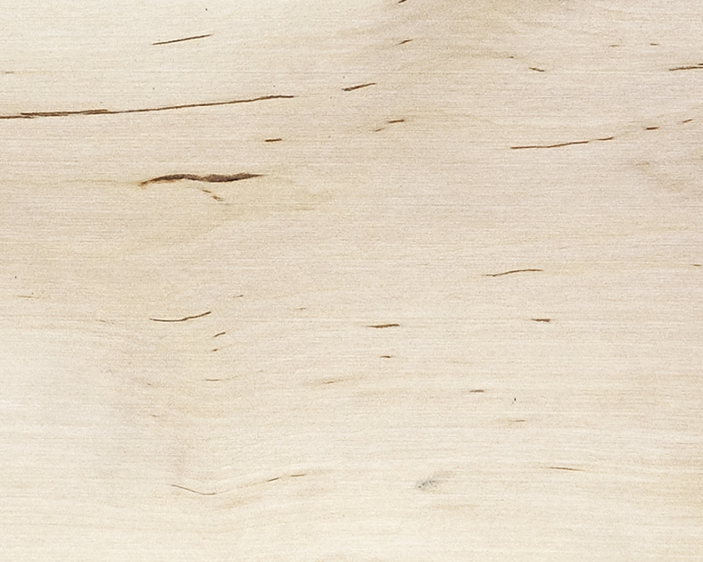 Local Hardwood: Birch