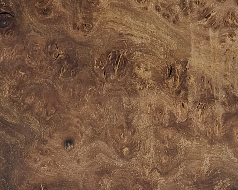 Scottish Hardwood: Burr Elm
