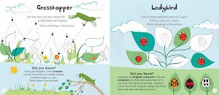 Bugs+and+Butterflies+-+sample+spreads-2.jpg