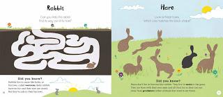 Woodland+Animals+sample+spreads-3.jpg