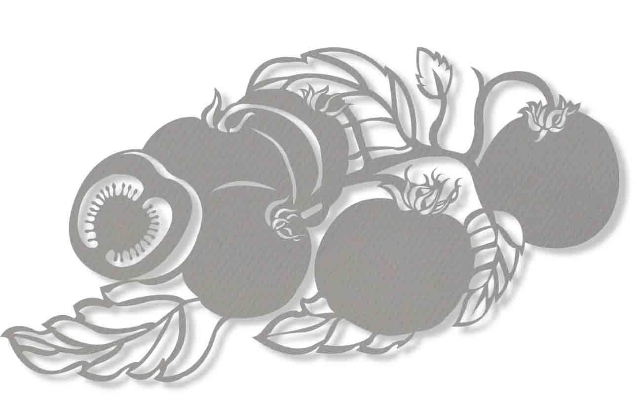 5)Basilgrowing.jpg