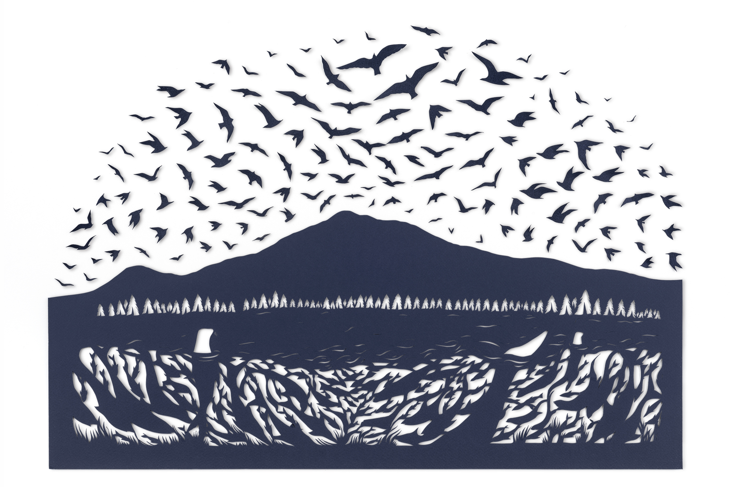 Sarah Dennis BBC Birds 02.jpg