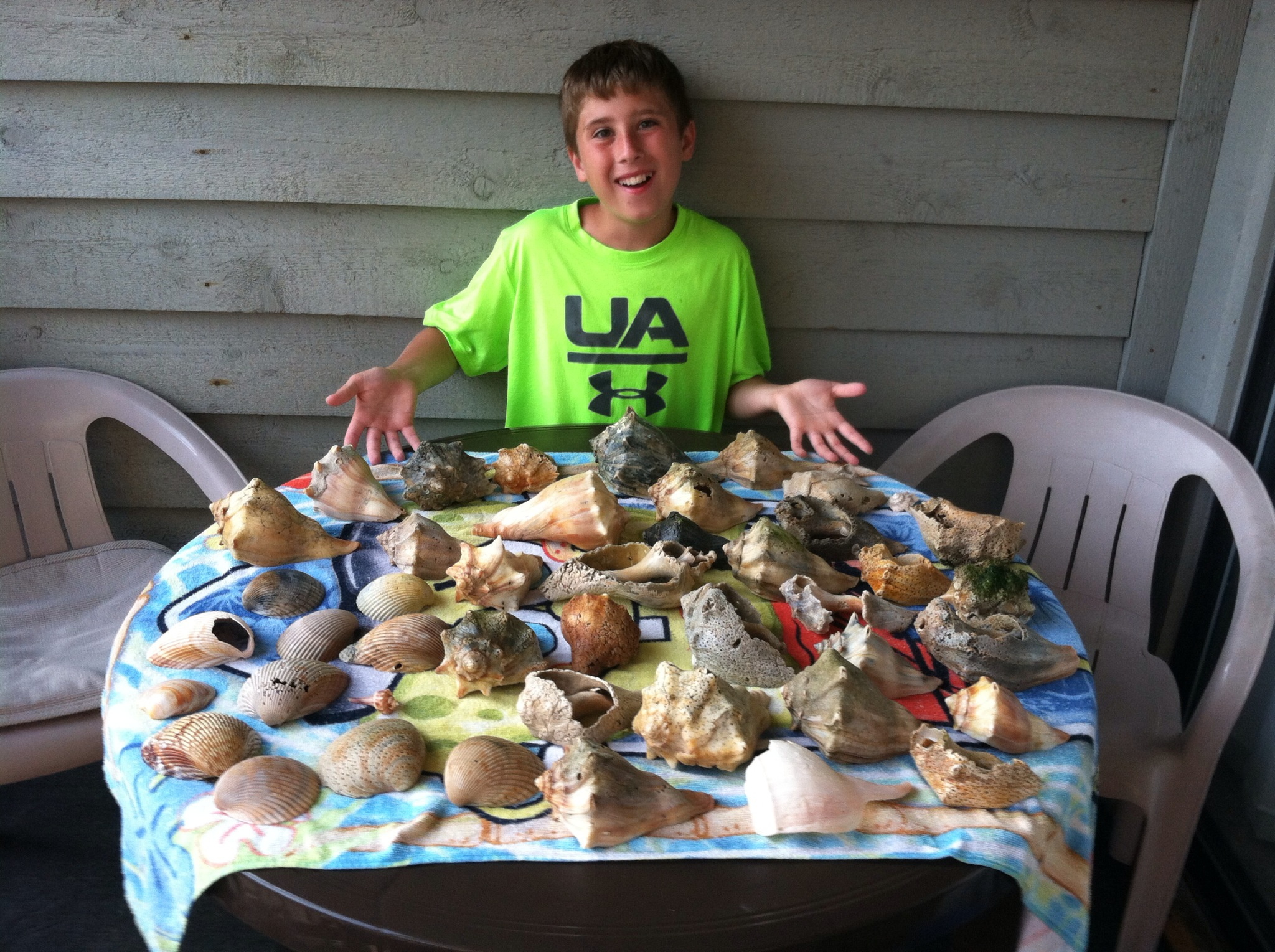 Shells Collected - Rover Boat Tours