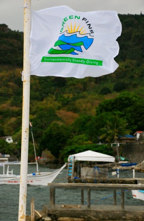 A Green Fins flag on a dive boat.  (Photo via the Green Fins website)