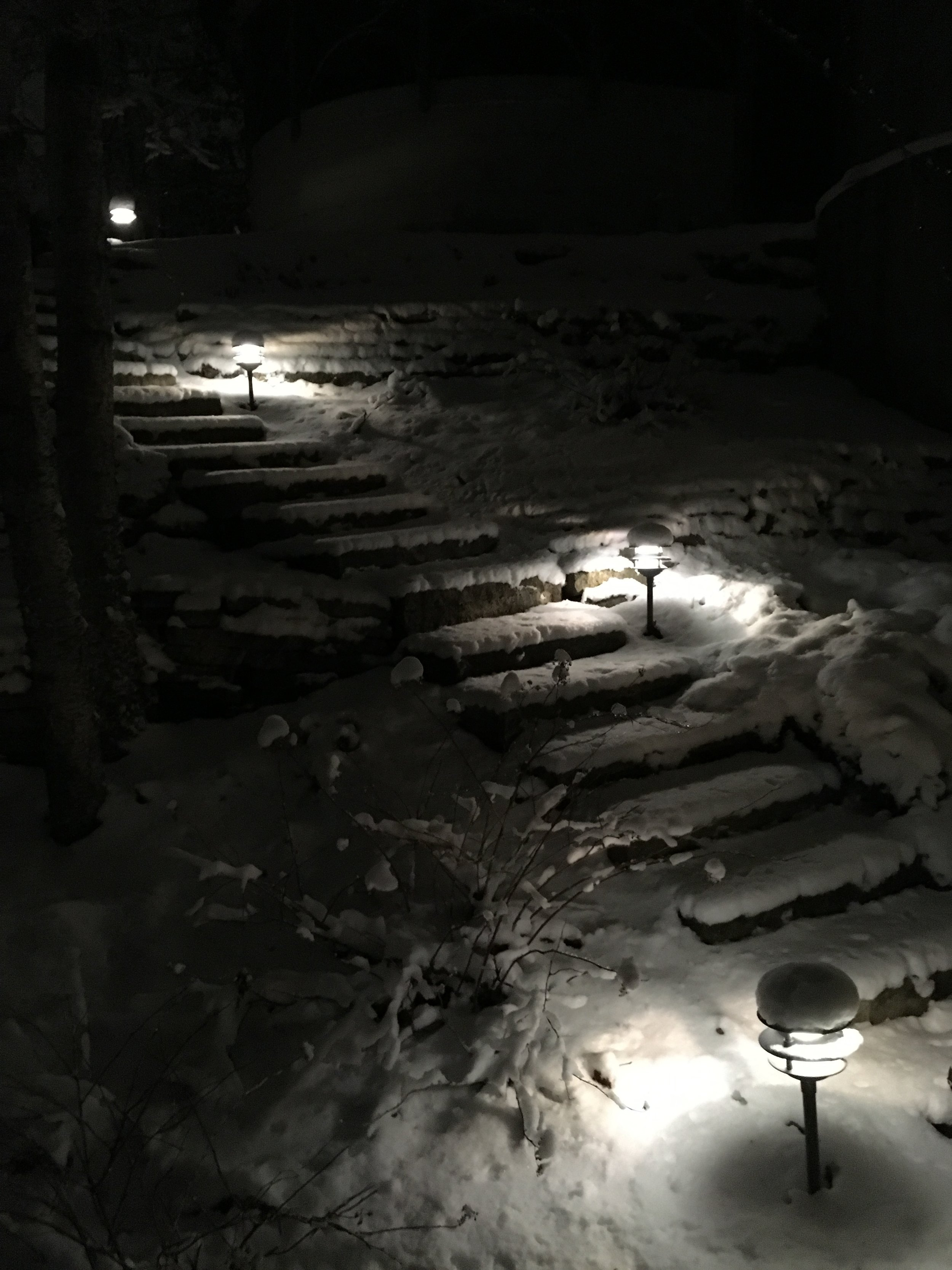 Path lighting adds mystery and intrigue to the night-time landscape.
