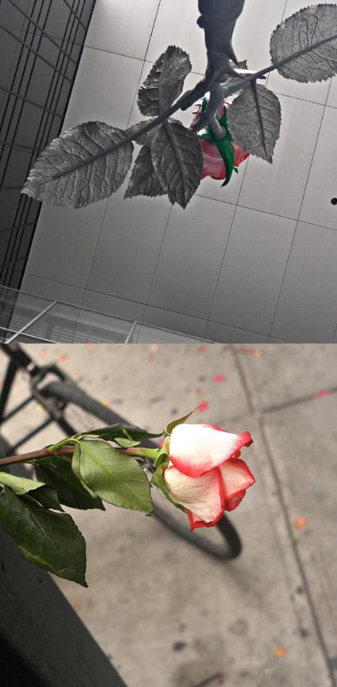 As Above, So Below   Rose sculpture (Isa Genzken) / Rose