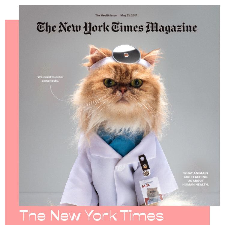 Jessica Pettway_ New York Times.jpg