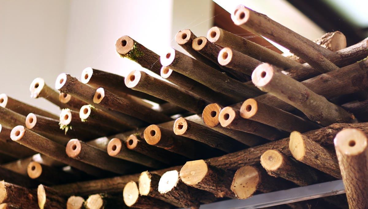 master-flute-maker-winne-clement-fluiten-luthier-craftsman-facteur-flûtes-flöten-hersteller-music-instrument-wood-wind--curing-supply-drilled-elder.jpg