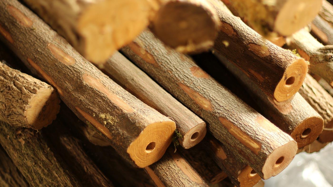 Fujara-flute-master-maker-winne-clement-fluiten-luthier-craftsman-music-instrument-wood-wind--curing- elder-dogwood-ash.jpg