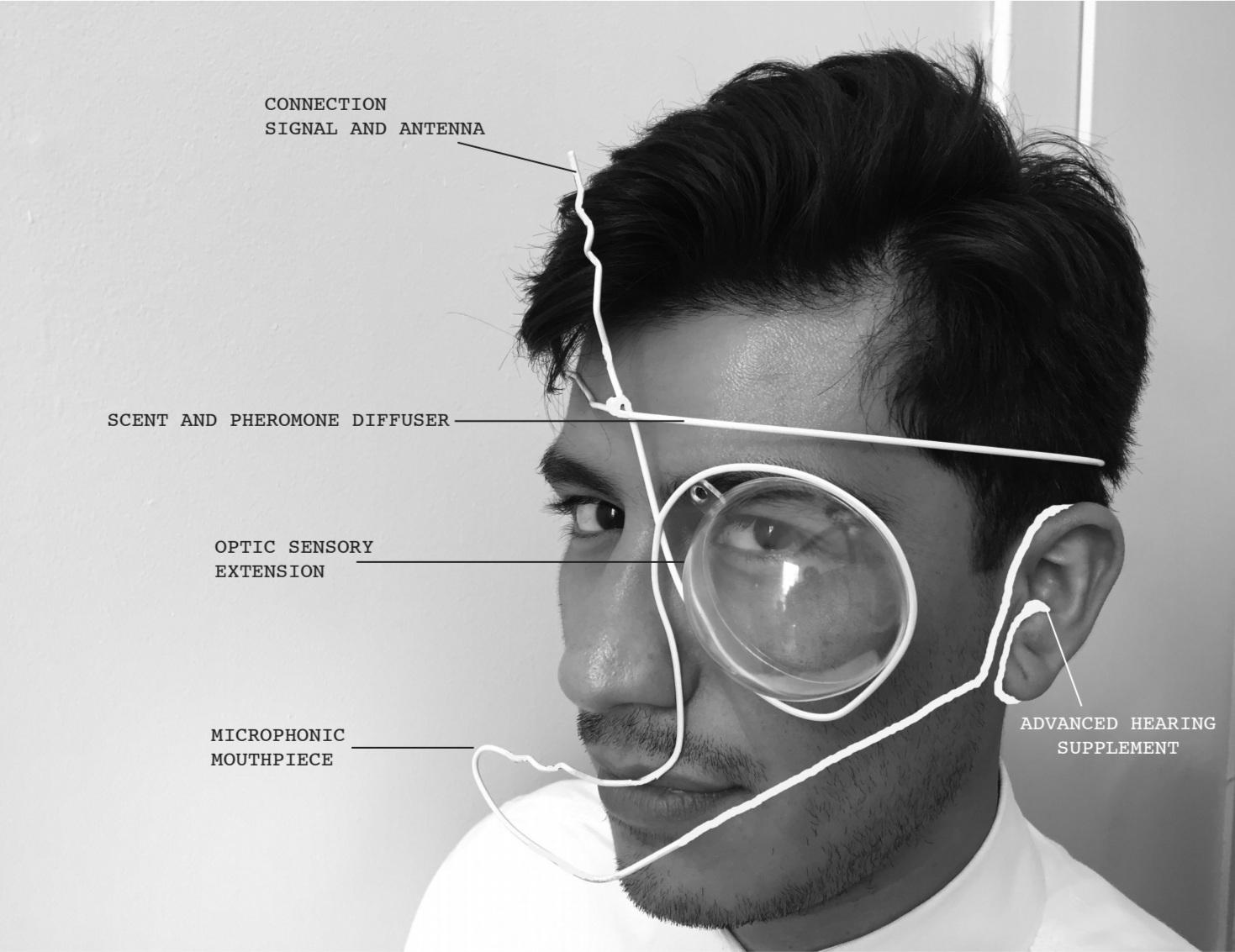 Anthophila Reveries: Speculative Headwear Prototype