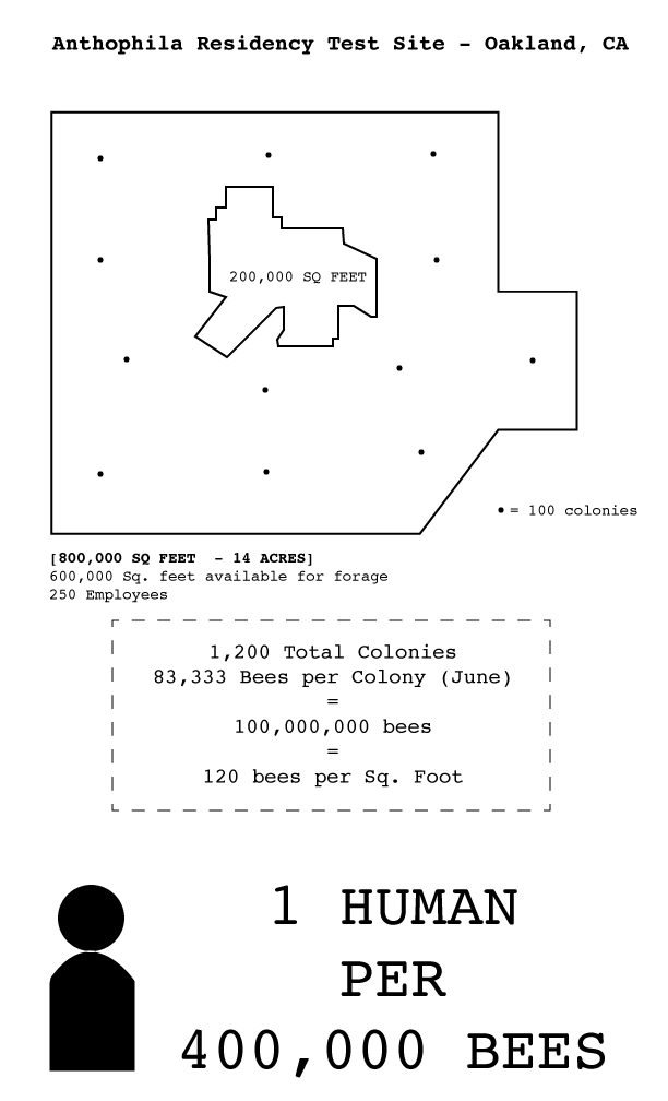 This diagram illustrates the peak human:bee ratio, according to the size of the site area and common estimates of bee colony sizes & spacial needs.