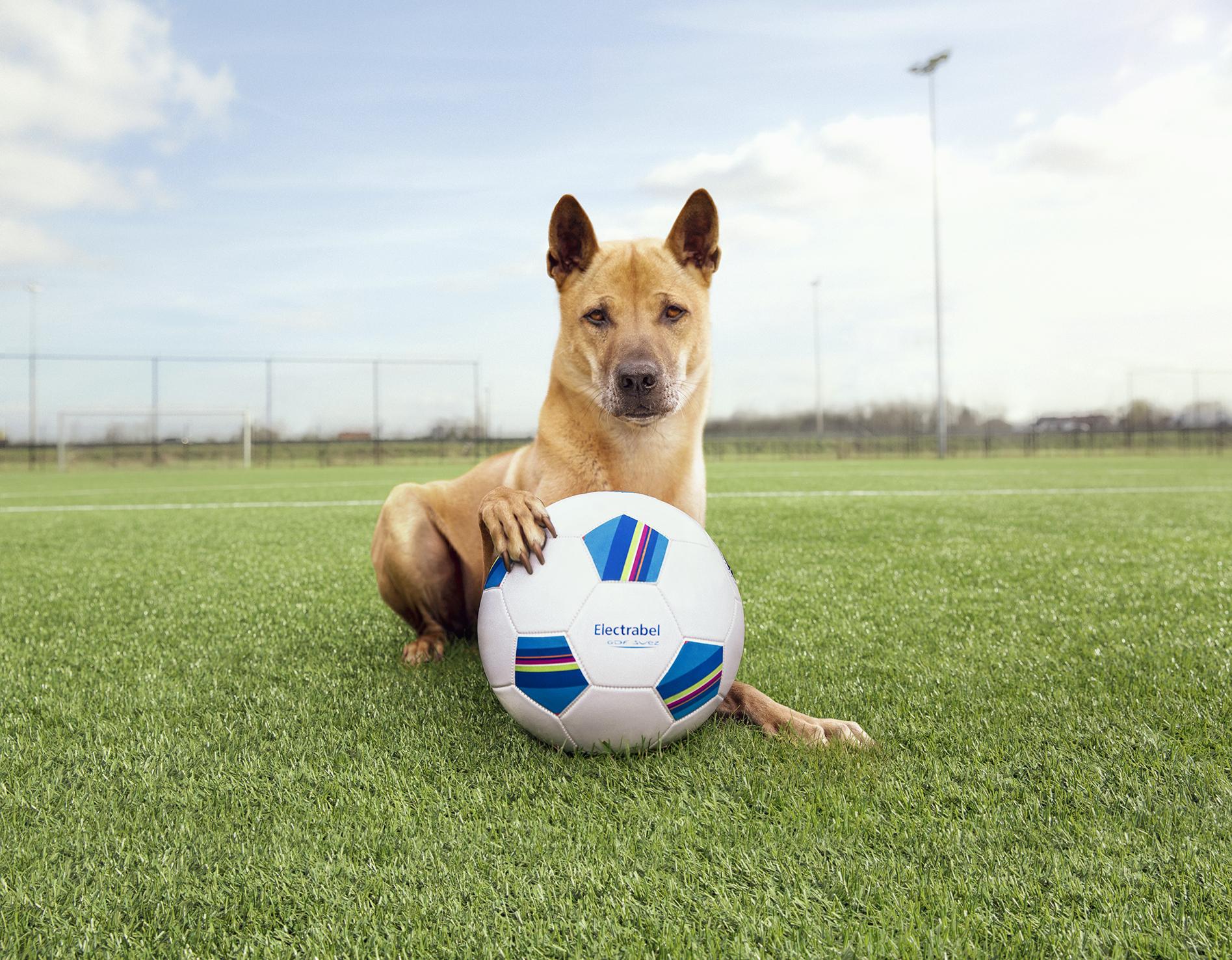 a_Kito_football5-kadrageklein.jpg